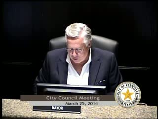 City Council Meeting - March 25, 2014