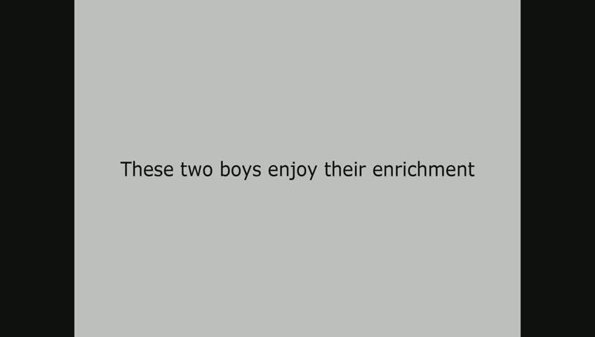 Takin Enrichment